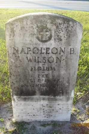 WILSON (VETERAN), NAPOLEON B - Hillsborough County, Florida | NAPOLEON B WILSON (VETERAN) - Florida Gravestone Photos