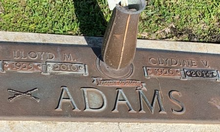 ADAMS, LLOYD M - Lee County, Florida   LLOYD M ADAMS - Florida Gravestone Photos
