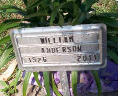 ANDERSON, WILLIAM ROBERT - Lee County, Florida | WILLIAM ROBERT ANDERSON - Florida Gravestone Photos