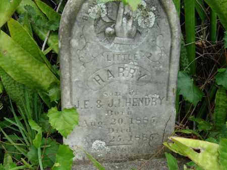 HENDRY, HARRY - Lee County, Florida | HARRY HENDRY - Florida Gravestone Photos