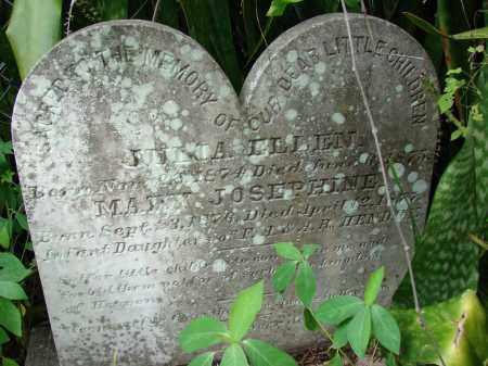 HENDRY, JULIA ELLEN - Lee County, Florida | JULIA ELLEN HENDRY - Florida Gravestone Photos