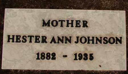 JOHNSON, HESTER ANN - Lee County, Florida | HESTER ANN JOHNSON - Florida Gravestone Photos