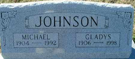JOHNSON, MICHAEL - Lee County, Florida | MICHAEL JOHNSON - Florida Gravestone Photos