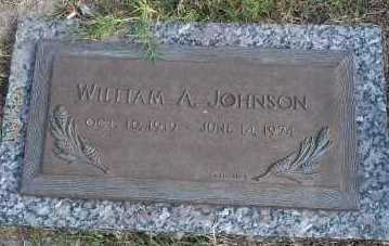 JOHNSON, WILLIAM ALLEN - Lee County, Florida | WILLIAM ALLEN JOHNSON - Florida Gravestone Photos