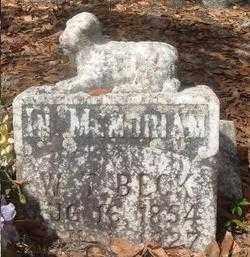 BECK, WILLIAM T - Levy County, Florida   WILLIAM T BECK - Florida Gravestone Photos