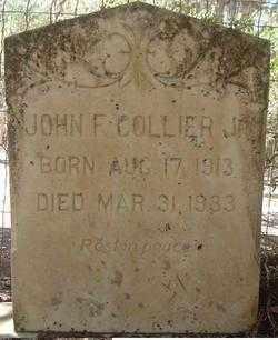 COLLIER JR., JOHN FRANKLIN - Levy County, Florida   JOHN FRANKLIN COLLIER JR. - Florida Gravestone Photos