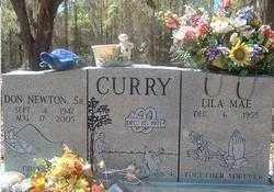 CURRY, LILA MAE - Levy County, Florida | LILA MAE CURRY - Florida Gravestone Photos