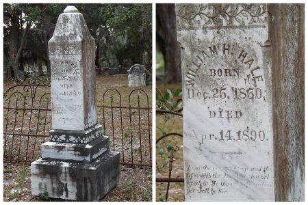 HALE, WILLIAM H. - Levy County, Florida | WILLIAM H. HALE - Florida Gravestone Photos