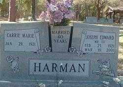 "HARMAN, JOSEPH EDWARD ""MR ED"" - Levy County, Florida | JOSEPH EDWARD ""MR ED"" HARMAN - Florida Gravestone Photos"