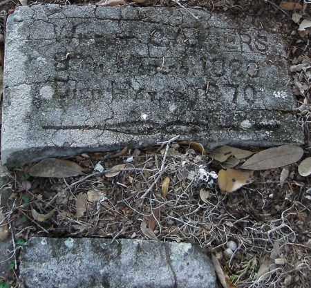 HIERS, LAVINIA - Levy County, Florida | LAVINIA HIERS - Florida Gravestone Photos