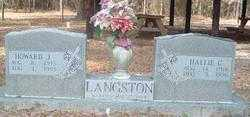 CURRY LANGSTON, HALLIE M - Levy County, Florida | HALLIE M CURRY LANGSTON - Florida Gravestone Photos