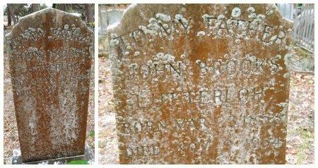LUTTERLOH, JOHN BROOKS - Levy County, Florida | JOHN BROOKS LUTTERLOH - Florida Gravestone Photos