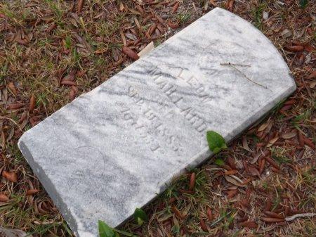 MAILLARD, LEON - Levy County, Florida | LEON MAILLARD - Florida Gravestone Photos