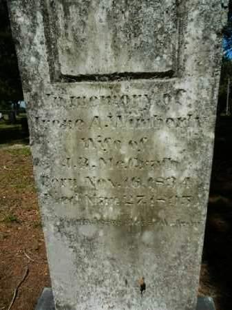 MCGRATH, IRENE A. - Levy County, Florida   IRENE A. MCGRATH - Florida Gravestone Photos