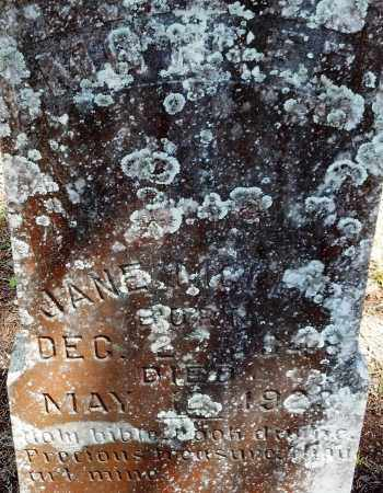 HIERS MCLEOD, JANE ISABELLA - Levy County, Florida | JANE ISABELLA HIERS MCLEOD - Florida Gravestone Photos