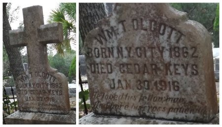 OLCOTT, WILLIAM TOPPING - Levy County, Florida | WILLIAM TOPPING OLCOTT - Florida Gravestone Photos