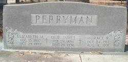 PERRYMAN, HORACE R - Levy County, Florida | HORACE R PERRYMAN - Florida Gravestone Photos