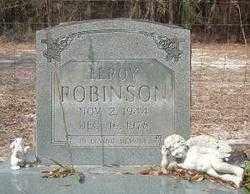ROBINSON, LEROY - Levy County, Florida | LEROY ROBINSON - Florida Gravestone Photos