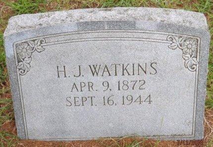 WATKINS, HENRY JACKSON - Levy County, Florida | HENRY JACKSON WATKINS - Florida Gravestone Photos