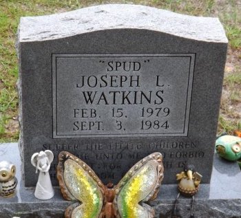 WATKINS, JOSEPH L. - Levy County, Florida | JOSEPH L. WATKINS - Florida Gravestone Photos