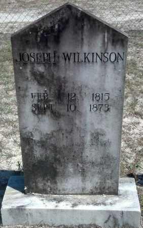 WILKINSON, JOSEPH - Levy County, Florida | JOSEPH WILKINSON - Florida Gravestone Photos