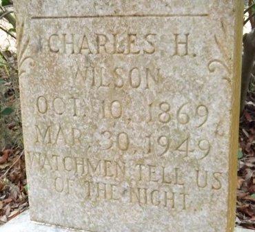 WILSON, CHARLES HAGEN - Levy County, Florida   CHARLES HAGEN WILSON - Florida Gravestone Photos