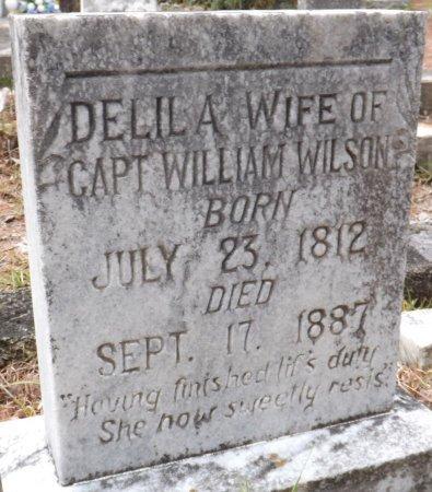 WILSON, DELILA - Levy County, Florida   DELILA WILSON - Florida Gravestone Photos