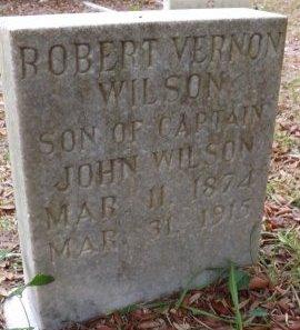 WILSON, ROBERT VERNON - Levy County, Florida | ROBERT VERNON WILSON - Florida Gravestone Photos