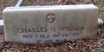 WILSON (VETERAN SAW), CHARLES HAGEN (NEW) - Levy County, Florida | CHARLES HAGEN (NEW) WILSON (VETERAN SAW) - Florida Gravestone Photos