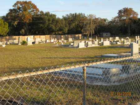 *FORTNER CEMETERY, OVERVIEW #2 - Manatee County, Florida   OVERVIEW #2 *FORTNER CEMETERY - Florida Gravestone Photos