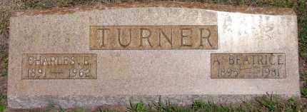 TURNER, CHARLES EDWARD - Manatee County, Florida | CHARLES EDWARD TURNER - Florida Gravestone Photos