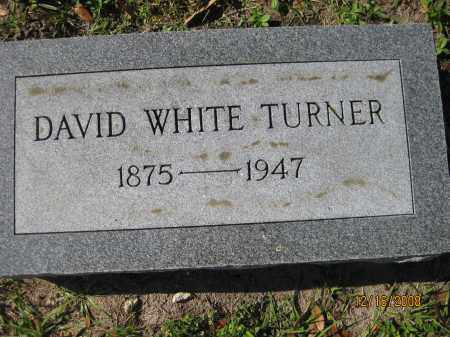 TURNER, DAVID WHITE - Manatee County, Florida   DAVID WHITE TURNER - Florida Gravestone Photos