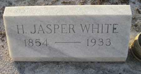 WHITE, HENRY JASPER - Manatee County, Florida | HENRY JASPER WHITE - Florida Gravestone Photos