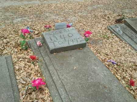 BING, ALICE - Marion County, Florida | ALICE BING - Florida Gravestone Photos