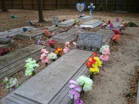 MALLARD, MIKAYLA S - Marion County, Florida | MIKAYLA S MALLARD - Florida Gravestone Photos