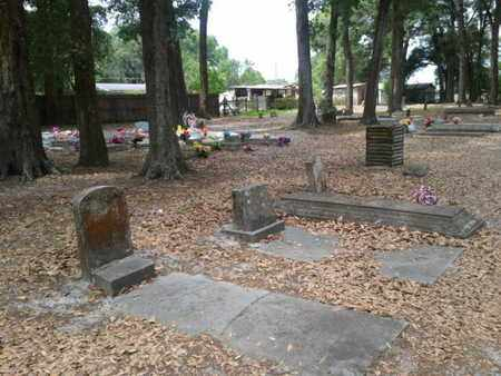 *TUCKER HILL OVERVIEW, . - Marion County, Florida | . *TUCKER HILL OVERVIEW - Florida Gravestone Photos