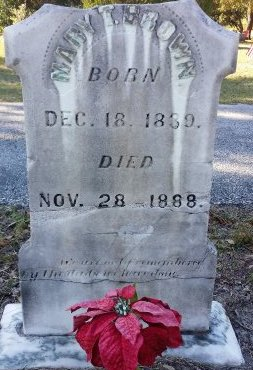 BROWN, MARY T.  - Pasco County, Florida | MARY T.  BROWN - Florida Gravestone Photos