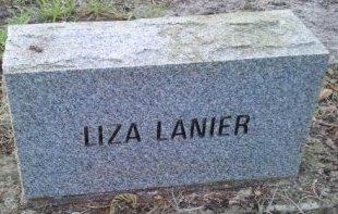 LANIER, LIZA - Pasco County, Florida | LIZA LANIER - Florida Gravestone Photos