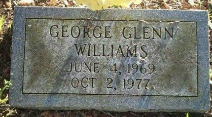 WILLIAMS, GEORGE GLENN - Pasco County, Florida | GEORGE GLENN WILLIAMS - Florida Gravestone Photos