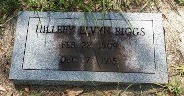 RIGGS, HILLERY ELVYN - Pinellas County, Florida | HILLERY ELVYN RIGGS - Florida Gravestone Photos