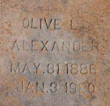 ALEXANDER, OLIVE L. - Sarasota County, Florida | OLIVE L. ALEXANDER - Florida Gravestone Photos