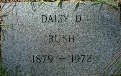 BUSH, DAISY D. - Sarasota County, Florida | DAISY D. BUSH - Florida Gravestone Photos