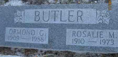 BUTLER, ORMOND G - Sarasota County, Florida | ORMOND G BUTLER - Florida Gravestone Photos