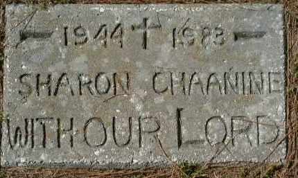 CHAANINE, SHARON - Sarasota County, Florida | SHARON CHAANINE - Florida Gravestone Photos