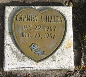HALES, CARMEN L - Sarasota County, Florida | CARMEN L HALES - Florida Gravestone Photos