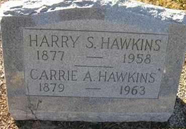 HAWKINS, CARRIE A - Sarasota County, Florida | CARRIE A HAWKINS - Florida Gravestone Photos