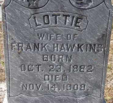 HAWKINS, LOTTIE - Sarasota County, Florida | LOTTIE HAWKINS - Florida Gravestone Photos
