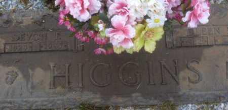 HIGGINS, DEVON F. - Sarasota County, Florida | DEVON F. HIGGINS - Florida Gravestone Photos