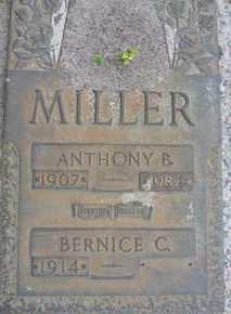 MILLER, ANTHONY B. - Sarasota County, Florida   ANTHONY B. MILLER - Florida Gravestone Photos