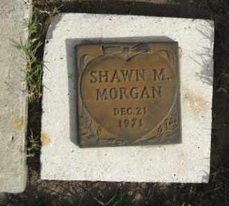 MORGAN, SHAWN M - Sarasota County, Florida   SHAWN M MORGAN - Florida Gravestone Photos
